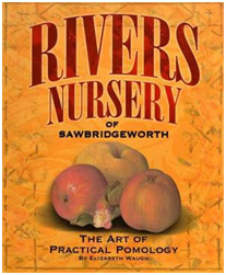 Rivers Nursery of Sawbridgeworth